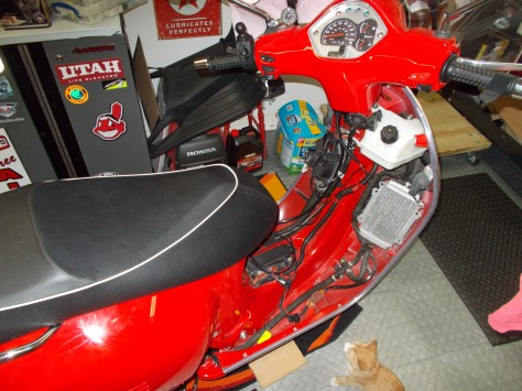 This is what the Vespa looks like with the floorboard and other panels removed. Sunny is ready to investigate further.